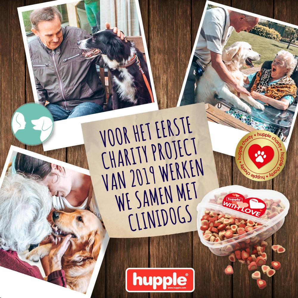 HUPPLE CHARITY - CLINIDOGS
