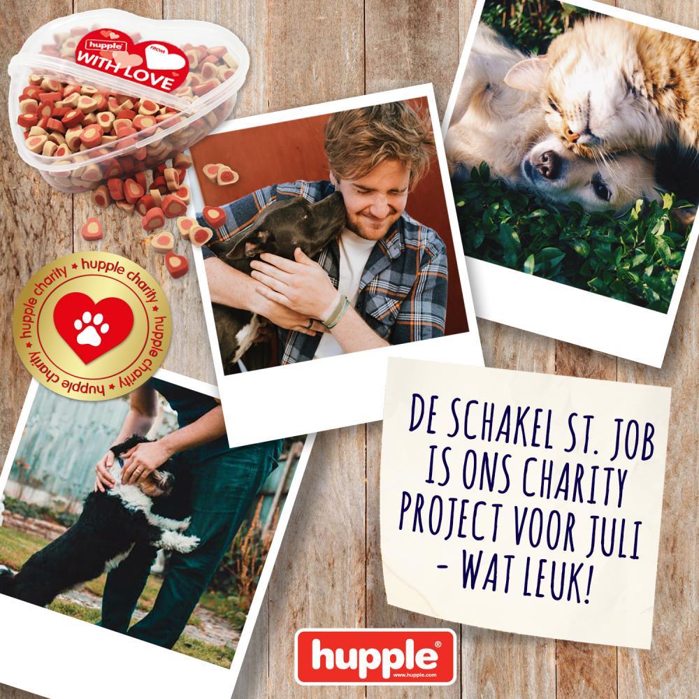 HUPPLE CHARITY - DE SCHAKEL ST. JOB