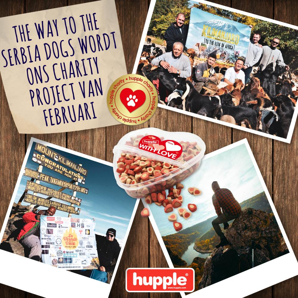 HUPPLE CHARITY - THE WAY TO THE SERBIA DOGS