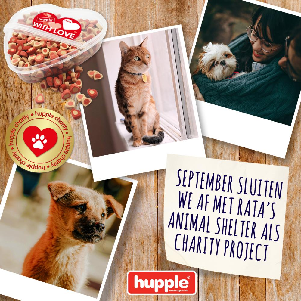 HUPPLE CHARITY - RATA'S ANIMAL SHELTER